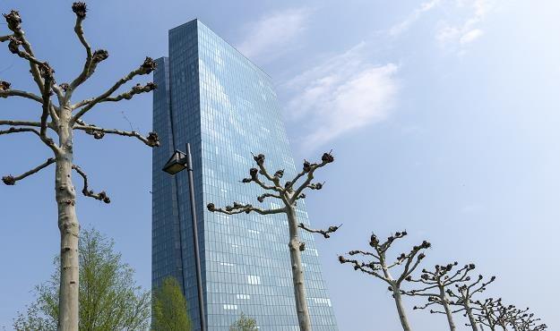 Siedziba EBC we Frankfurcie nad Menem /EPA