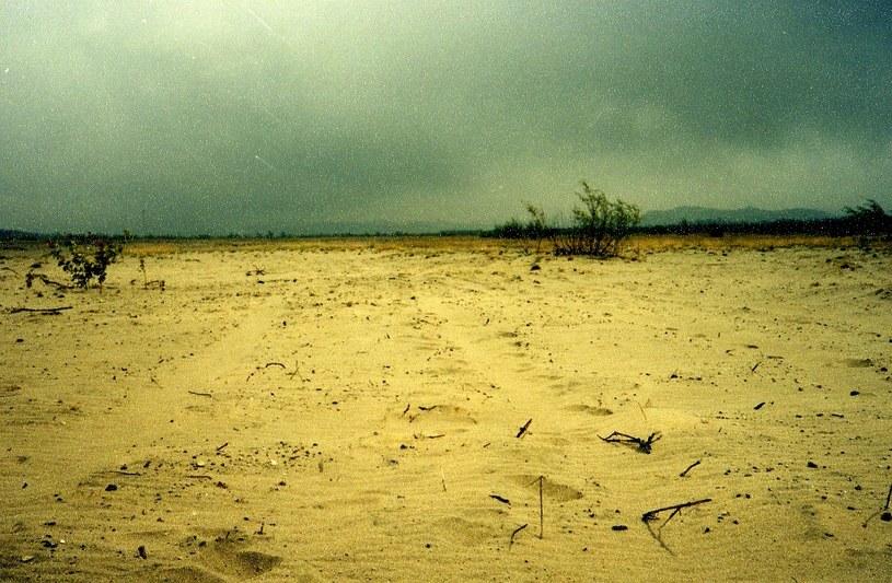 Sierpień 1998 r. Użytkowana przez Wojsko Polskie północna część pustyni bardziej przypomina step /Odkrywca