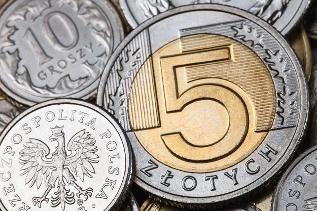 Sierpniowe zawirowania na rynkach wschodzących nie pozostały bez wpływu na polską walutę /©123RF/PICSEL