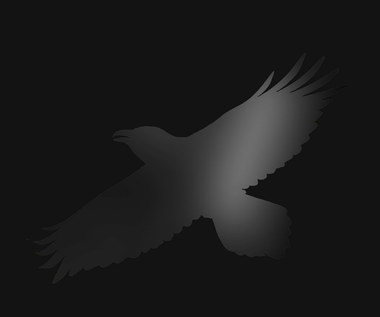 "Sigur Rós, S. Andersen, H.O. Hilmarsson, M.H.M Sigfusdóttir ""Odin's Raven Magic"": Duszna namiastka [RECENZJA]"