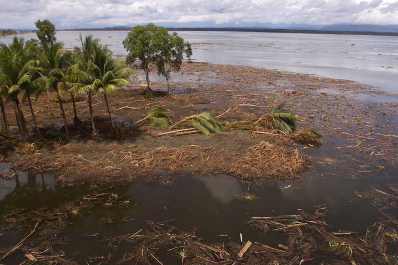 Silne trzęsienie ziemi w Papui-Nowej Gwinei /PALANI MOHAN / SYDNEY MORNING HERALD/POOL /AFP