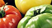 Silniejsze mięśnie dzięki... zielonym pomidorom