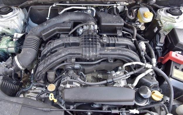 Silnik 2.0 ma dobre osiągi, ale jak na swoją moc nieco zbyt dużo pali. /Motor