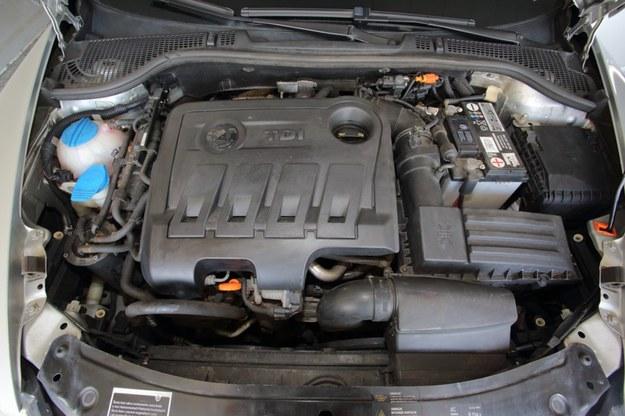 Silnik 2.0 TDI słynie z niezawodności, ale wymagał gwarancyjnej wymiany turbosprężarki już przy 23 tys. km. /Motor