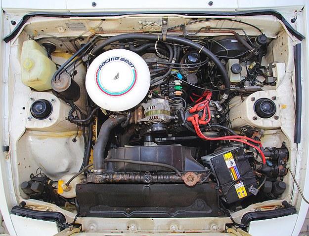 Silnik zajmuje bardzo mało miejsca pod maską. To po prostu obudowa wirników z osprzętem na zewnątrz. Na wolnych obrotach pracuje bezwibracyjnie. /Motor