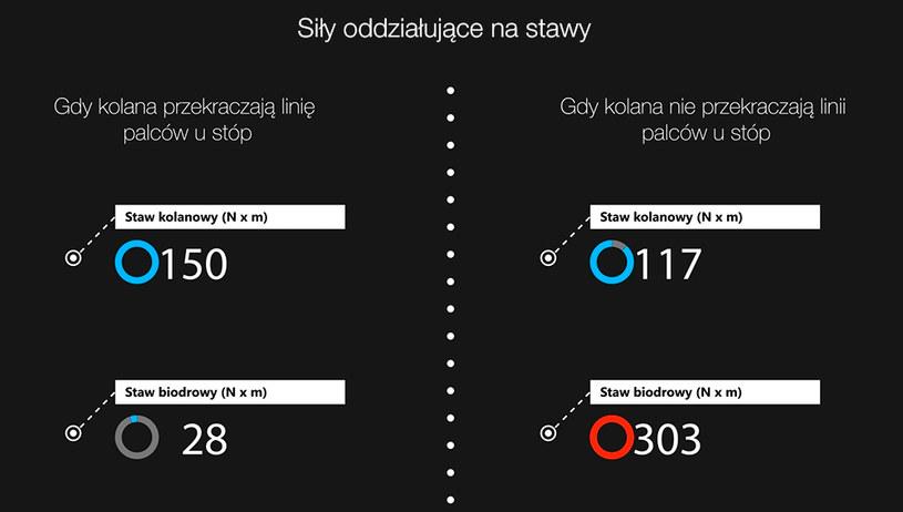 Siły oddziałujące na stawy /INTERIA.PL