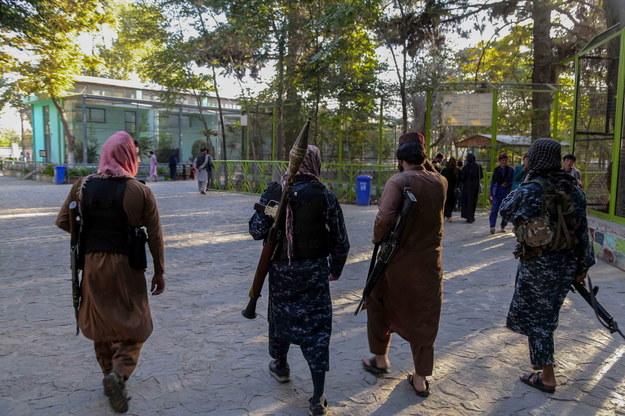 Siły talibów patrolują zoo i park rozrywki w Kabulu w Afganistanie /STRINGER /PAP/EPA