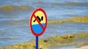 Sinice: Największa zmora bałtyckich plaż