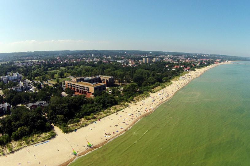 Sinice zaatakowały trójmiejskie plaże /Mirosław Pieślak /Agencja FORUM