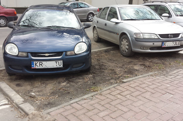 Skąd kierowca ma wiedzieć, że parkuje nie na  byłym trawniku? /poboczem.pl