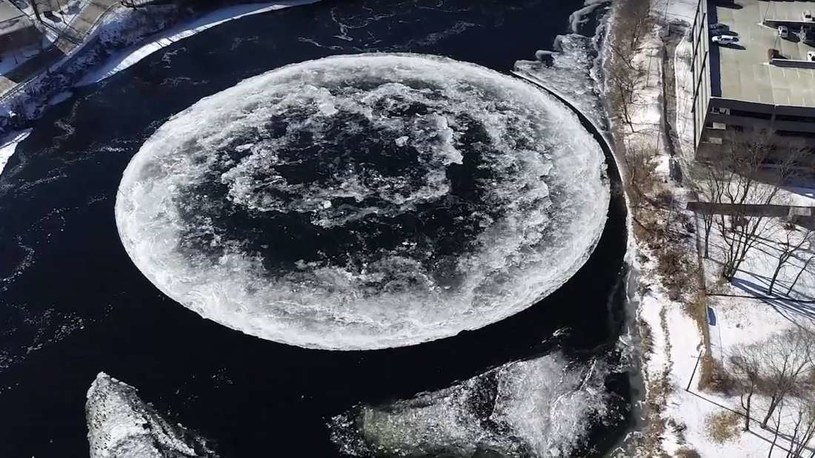 Skąd się biorą takie lodowe dyski? Naukowcy nie mają pewności /materiały prasowe
