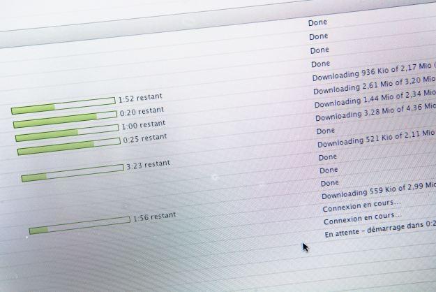 Skala internetowego piractwa przekracza w Polsce 50 proc. /AFP