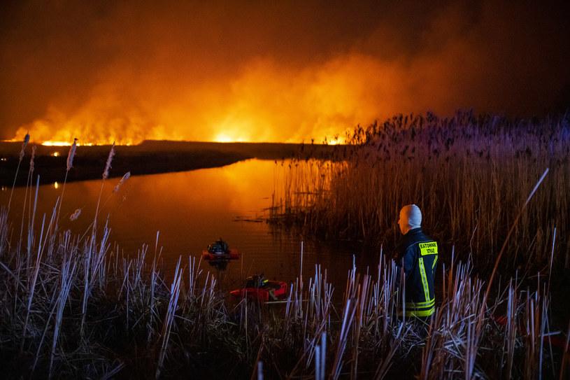 Skala pożaru w największym parku w Polsce /MICHAL KOSC /Agencja FORUM