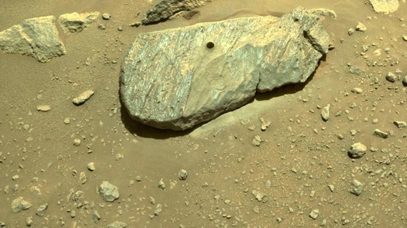 Skała, z której pobrano marsjańską próbkę /NASA