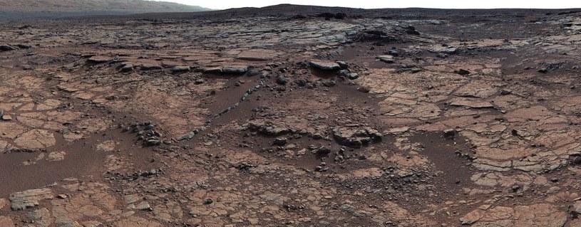 Skały z rejonu badań, prowadzonych przez Curiosity /NASA