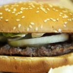 Skandal na Wyspach. Konina w... wołowych hamburgerach
