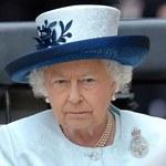 Skandal w Wielkiej Brytanii! Koń wyścigowy Elżbiety II był na dopingu!