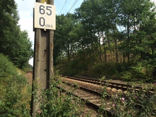 Skarpy wzdłuż torów kolejowych w dzielnicy Szczawienko /Bartek Paulus /RMF FM