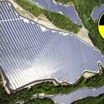 Skażona Fukushima zaczyna zmieniać się w ekologiczny raj