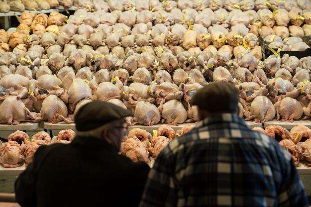 Skażone kurczaki dotarły do Polski (zdjęcie ilustracyjne) /AFP