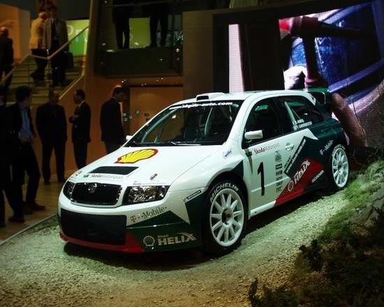 Skoda Fabia WRC /INTERIA.PL