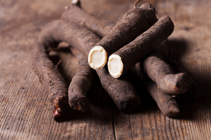Skorzonera, znana jest także jako wężymord, gdyż dawniej stanowiła antidotum na jad węży /123RF/PICSEL