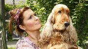 Skrzynka przygotowuje psa do porodu