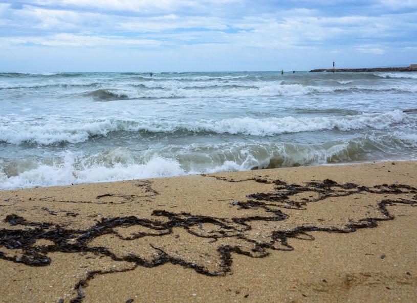 Skupiska wodorostów, nierówne dno i pojawiające się nagle wiry - oto pułapki, które czyhają na nas nad morzem /123RF/PICSEL