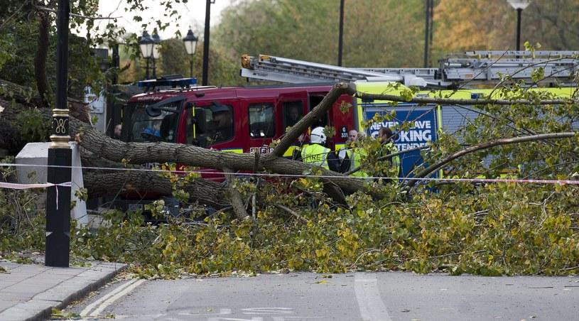 Skutki huraganu w Knightsbridge /PAP/EPA