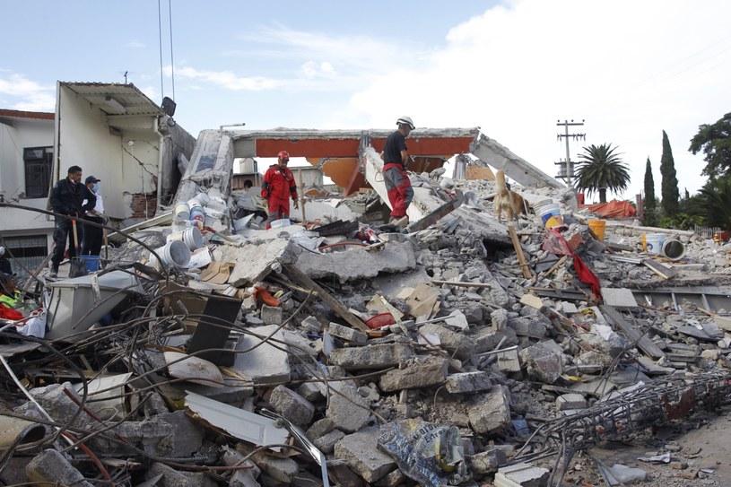 Skutki trzęsienia ziemi /SASHENKA GUTIERREZ /PAP/EPA