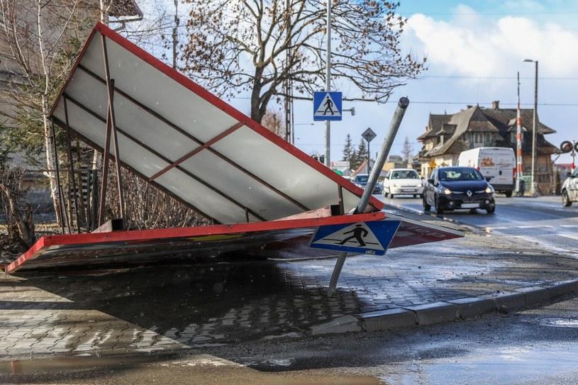 Skutki wichury (arch.) /Michał Adamowski /Reporter