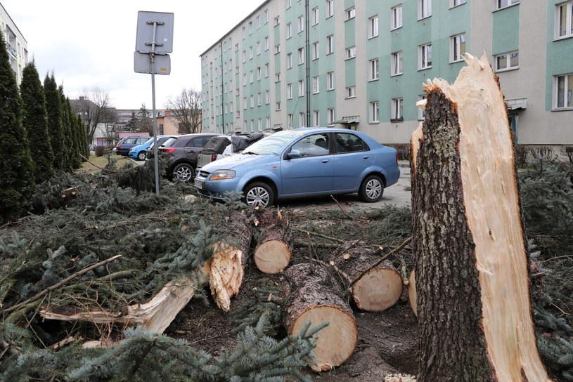 Skutki wichury - zniszczone samochody na osiedlu w centrum Nowego Targu, zdjęcia z 11 marca / Grzegorz Momot    /PAP