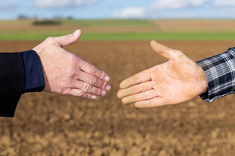 Słaby uścisk dłoni może świadczyć o problemach z wątrobą /123RF/PICSEL
