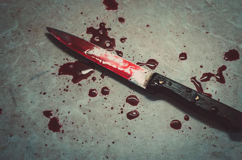 Ślady krwi znaleziono na wielu narzędziach, m.in na nożu i sekatorze /123RF/PICSEL