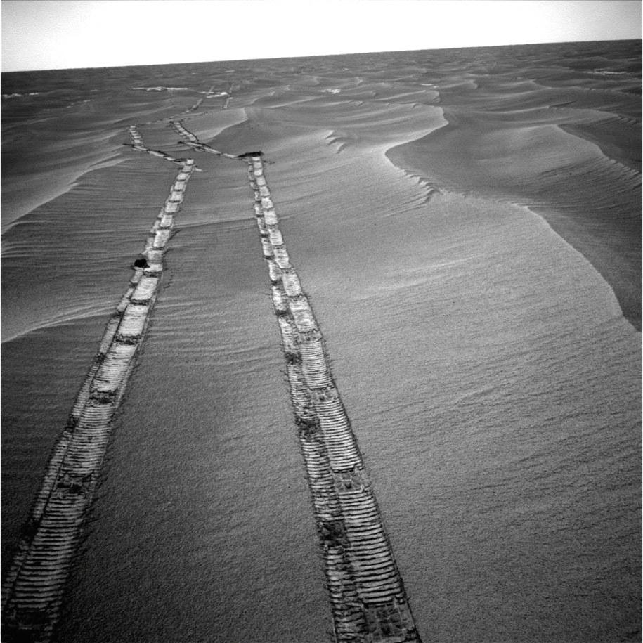 Ślady łazika Opportunity na powierzchni Marsa /NASA /Materiały prasowe