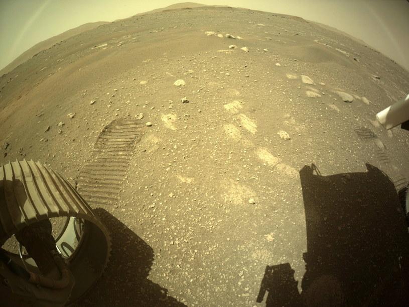 Ślady Perseverance na Marsie /EPA/NASA/JPL-Caltech /PAP