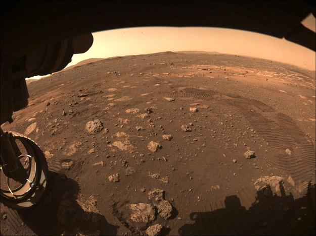Ślady pierwszej przejażdżki Perseverance na Marsie, 4. marca 2021 roku. /NASA/JPL-Caltech /Materiały prasowe