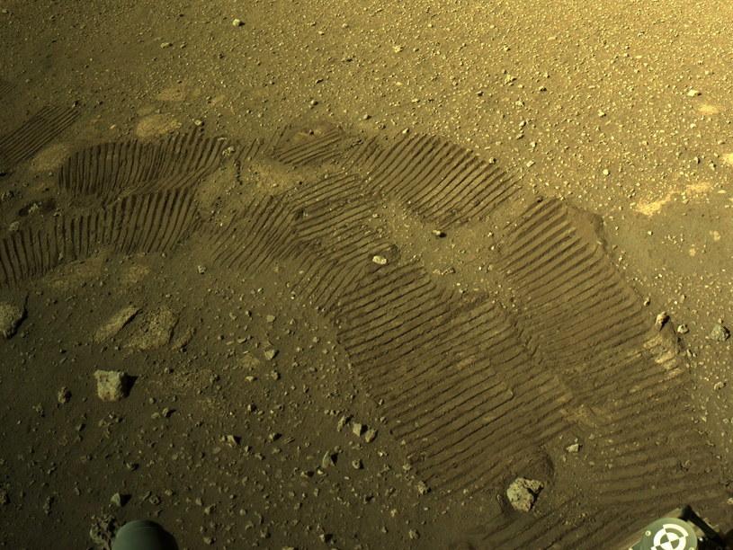 Ślady zostawiane przez Perseverance /EPA/NASA/JPL-Caltech /PAP/EPA