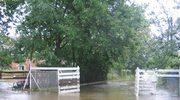Śląskie: Burza podtopiła Jasienicę
