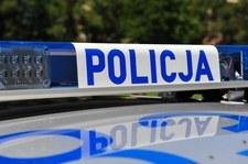 Śląskie: Mąż ścinał drzewo. Spadający konar zabił żonę