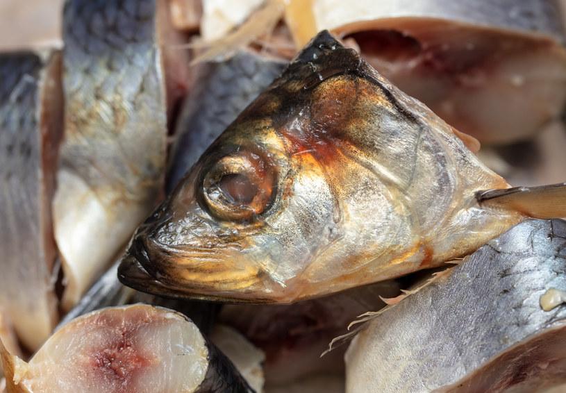 Śledź to wciąż zbyt mało doceniana ryba /123RF/PICSEL