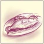 Śledzie w sosie śmietanowo-ziołowym - Dorota