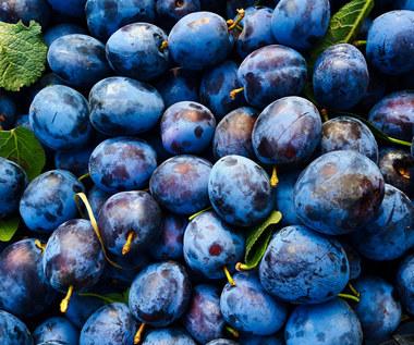 Śliwki: Naciesz się smakiem świeżych owoców