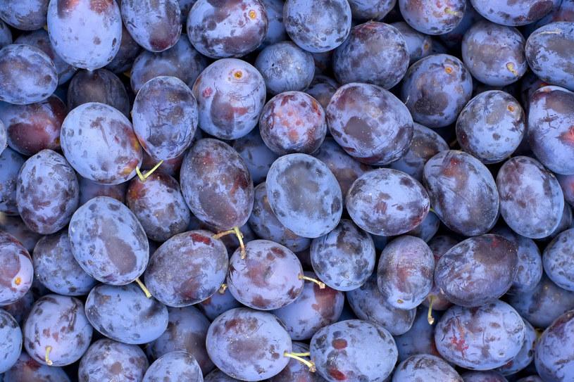 Śliwki są smaczne i tanie, ale mogą podnieść poziom cukru we krwi /123RF/PICSEL