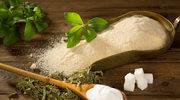 Słodsza od cukru i bez kalorii