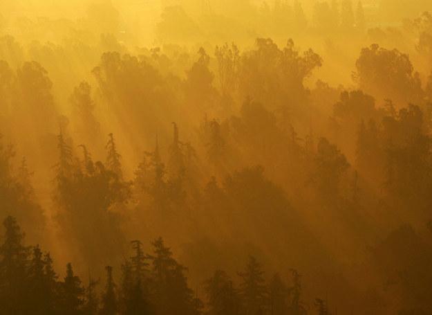 Słońce pozwala nam żyć, ale to nieuniknione - kiedyś nas zabije... /AFP