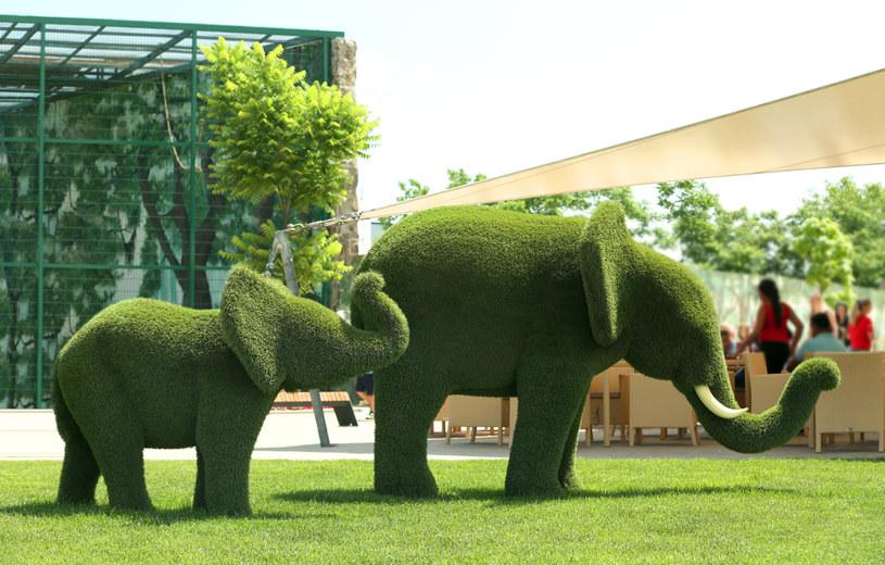 Słonie są popularnym motywem /123RF/PICSEL