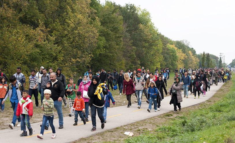 Słowacja gotowa na postawienie ogrodzenia na granicy /PAP/EPA