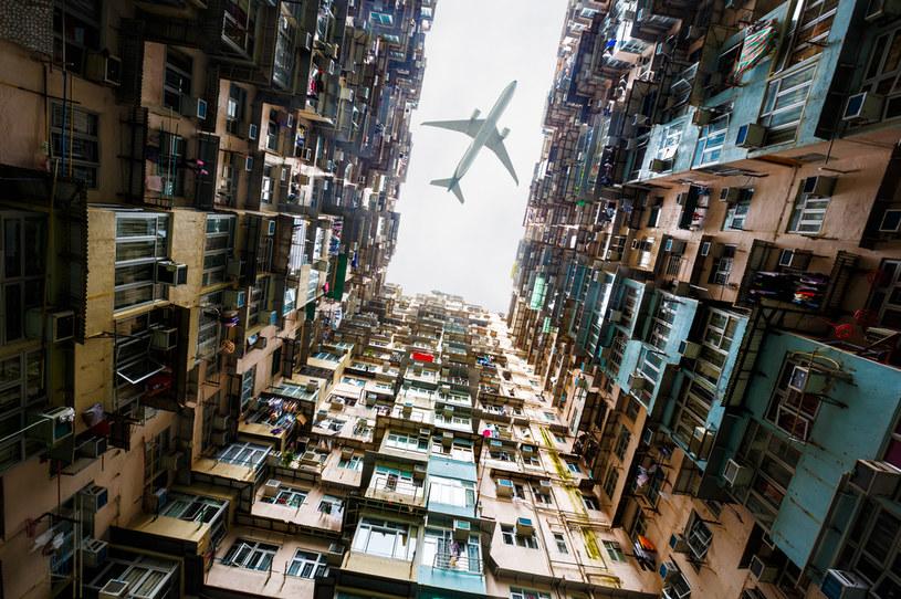"""Słowo """"mrówkowiec"""" w  Hongkongu nabiera nowego znaczenia /123RF/PICSEL"""