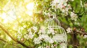 Ślub i wesele w ogrodzie